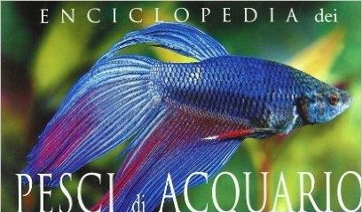 L enciclopedia dei pesci d acquario acquari blog for Vendita pesci da laghetto online